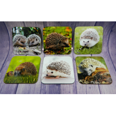 Coaster Set - Hedgehogs