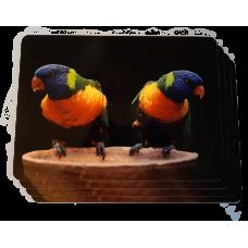 Parrot Placemat Set