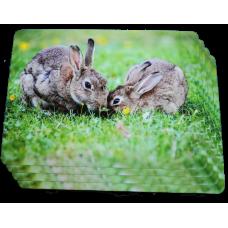 Rabbit Placemat Set