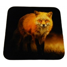 Coaster - Fox in dark